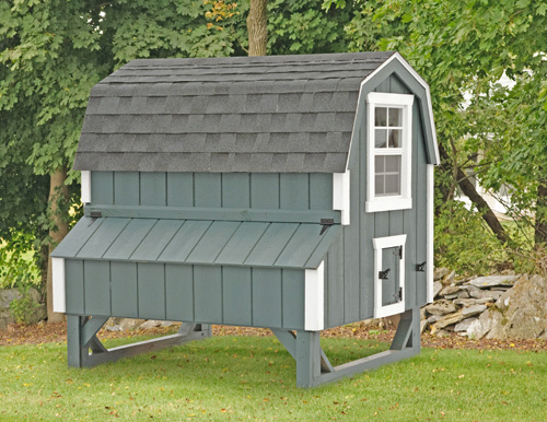 Dutch D46 4x6 CHICKEN COOPS