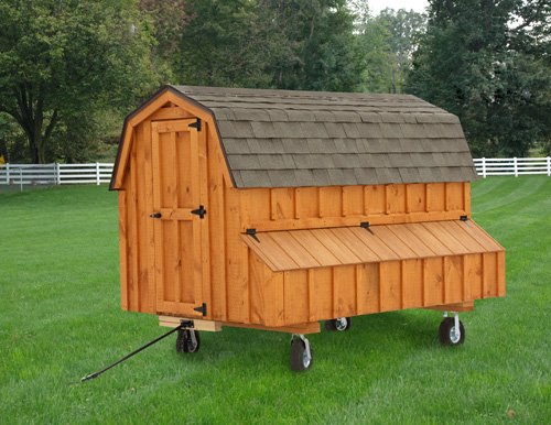 Dutch D48 4x8 CHICKEN COOPS