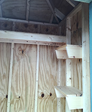 picture showing custom wood shelves on the interior of amish made garden shed