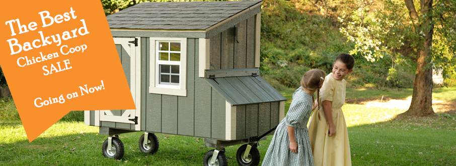 Amish Lean-To Chicken Coop Sale